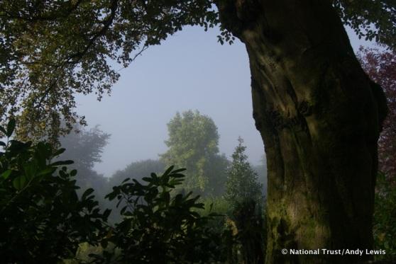 uppark garden